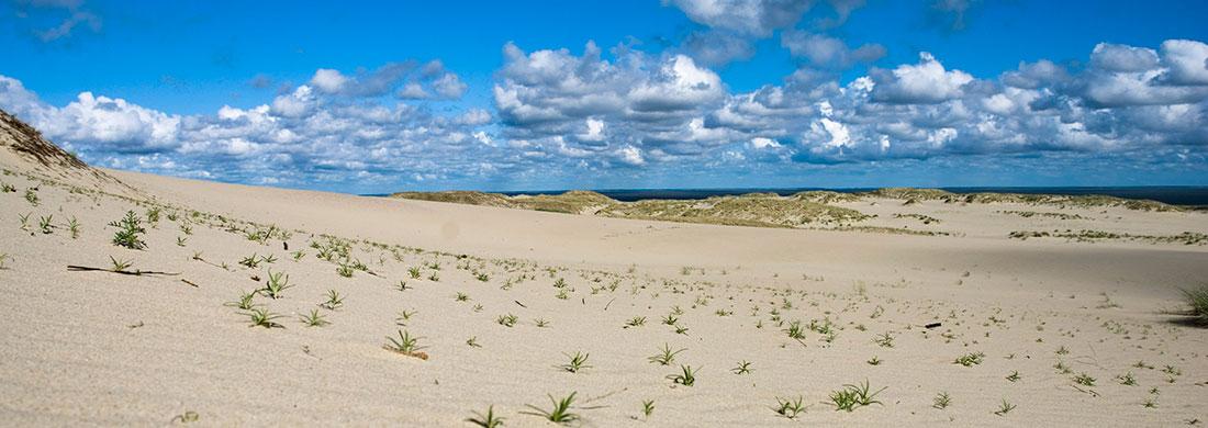 sand dunes, lithuania, nida